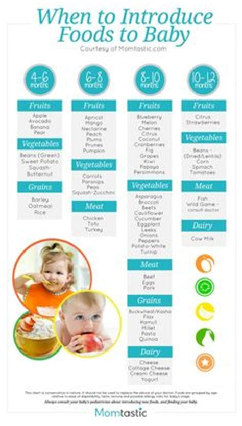 solid food chart  babies aged  months   months find age  foods