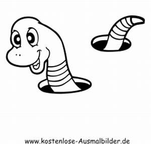 Tiere Unter Der Erde : ausmalbilder wurm tiere zum ausmalen malvorlagen wuermer ~ Frokenaadalensverden.com Haus und Dekorationen
