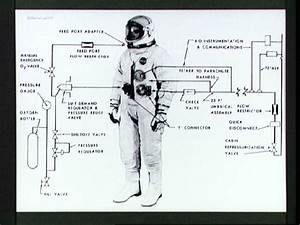 Astronauts Space Suit Labeled - Pics about space