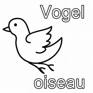 Kostenlose Malvorlage Franzsisch Lernen Vogel Oiseau