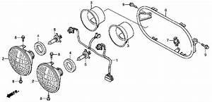 honda ruckus motor diagram 26 wiring diagram images With honda ruckus stator