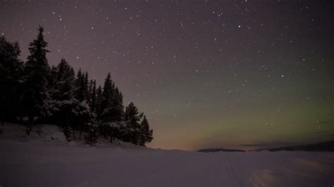 lapland adventure break  days  nights nordic visitor