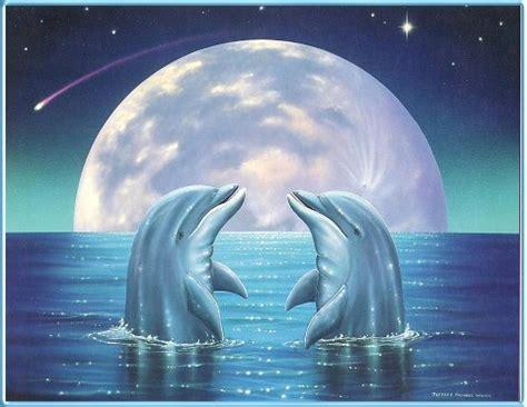 Dolphin Moon Love