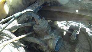 Scrambler 400 4x4 Carb Hoses