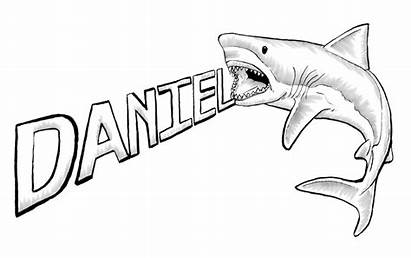 Shark Drawing Outline Clipart Drawings Sharks Coloring