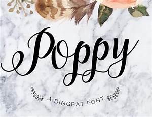 Poppy Script Font - Befonts com