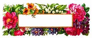 Antique Images: Digital Flower Label Blank Wildflower ...