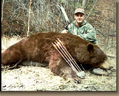 Black Bear  Day Spring Bow Or Rifle Hunts