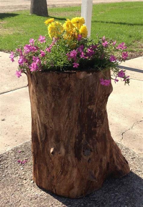 jardin exotique un tronc d arbre devient un 233 l 233 ment d 233 coratif
