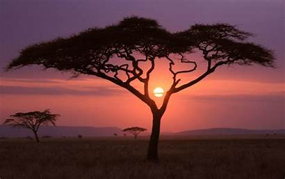 Sunset African Wallpapers