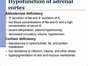 Pathophysiology Of Endocrine System   Subject 18