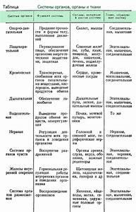 Органы малого таза при гипертонии