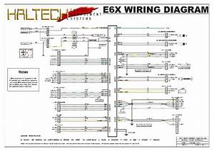 Haltech E6x Wiring Diagram  With Images