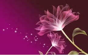 Pink Flowers 3D Wallpa...