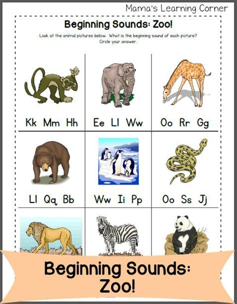 beginning letter sounds zoo edition worksheets