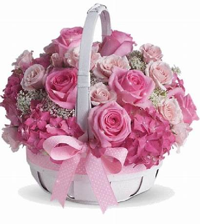 Roses Basket Sparkling