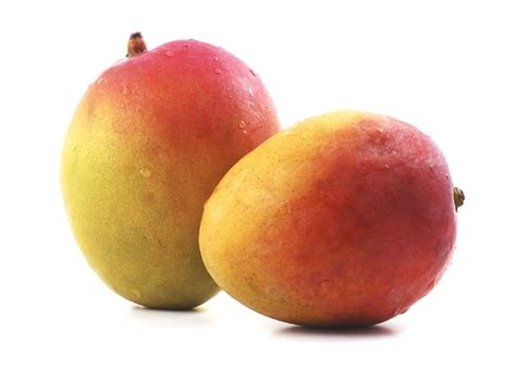 Mango Varieties Available In Gujarat