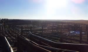 Cattle Pen Flint Hills Kansas