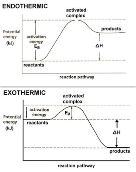 dr will mccarthy s science site endothermic vs exothermic