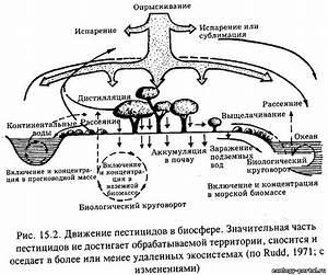 Укол кеналог в коленный сустав при артрозе препараты