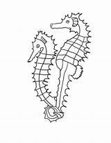 Coloring Seahorse Printable Sheet Wildlife Ocean Animals Realistic Sheets Outline Drawing Horse Wonderweirded Seahorses Seaweed Cartoon Activities Colouring Animal Ll sketch template