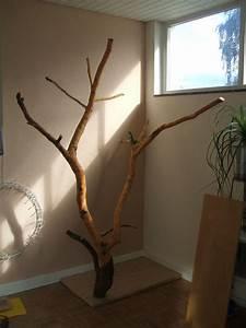 Kratzbaum Echter Baum : naturkratzbaum ~ Frokenaadalensverden.com Haus und Dekorationen