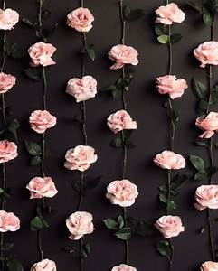 wallpaper floral pink black | Tumblr