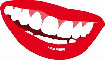 Clipart Smile Teeth Panda Advertisement