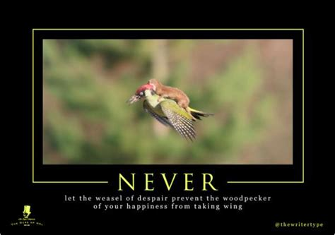 Weasel Meme - weasel rides woodpecker here are the 7 best weaselpecker memes vision times