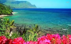 32 best images about oceanview with flowers on Pinterest ...