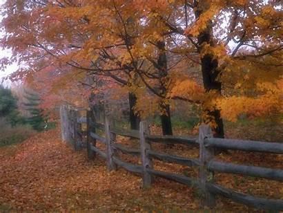Country Desktop Fence Autumn Road Pixelstalk