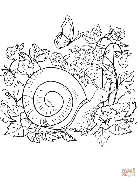 snail coloring page free printable coloring pages