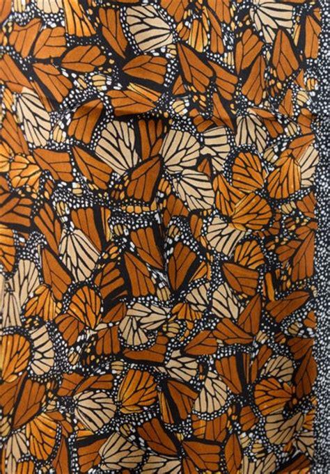 pineda covalin silk monarch butterfly long scarf  brown