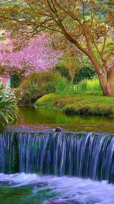 spring nature hd wallpapers  android  android