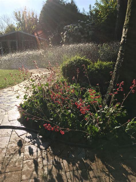 Garten Und Landschaftsbau Tewes Dorsten by Kontakt G 246 Bbeler Garten Und Landschaftsbau Dorsten