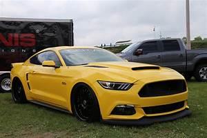 Cervini's Mustang Stalker Hood (2015-2017) - 1233