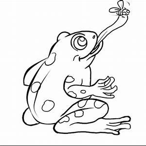45 Frog Life Cycle Coloring Page, Frog Life Cycle ...