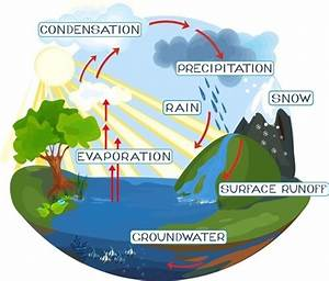 The Water Cycle - Lesson