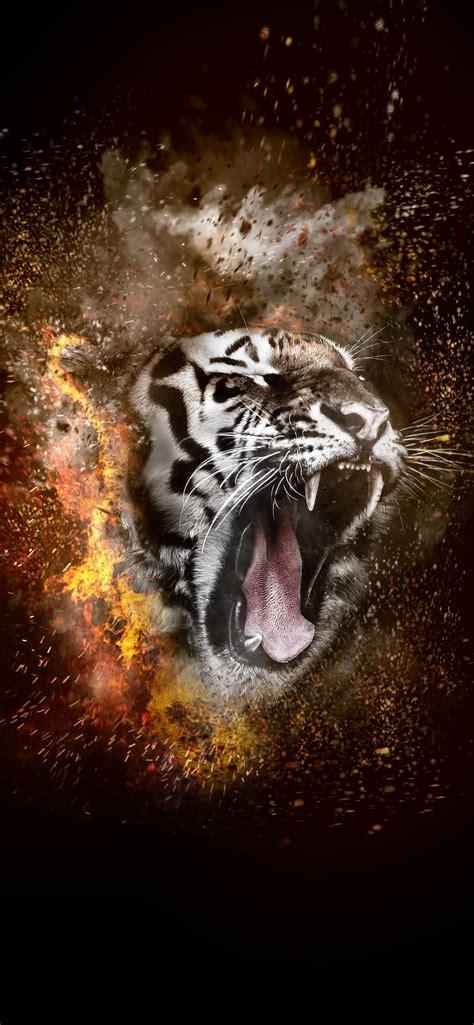 tiger roar fire creative design iphone xs max