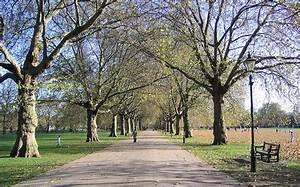 Parks In London : the best parks in london travmonkey ~ Yasmunasinghe.com Haus und Dekorationen