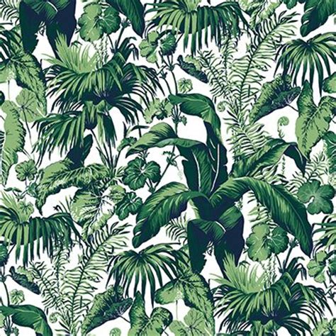 palm jungle papier peint