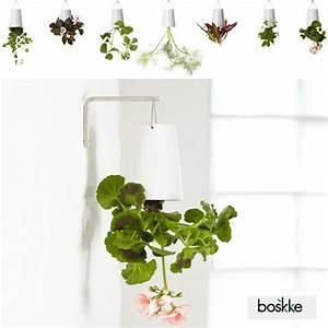 Boskke Sky Planter : a new perspective on hanging plants introducing boskke sky planters if it 39 s hip it 39 s here ~ Orissabook.com Haus und Dekorationen