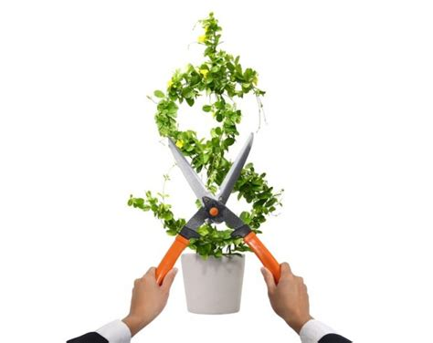 Slash Your Annual Energy Costs With These Green Tips