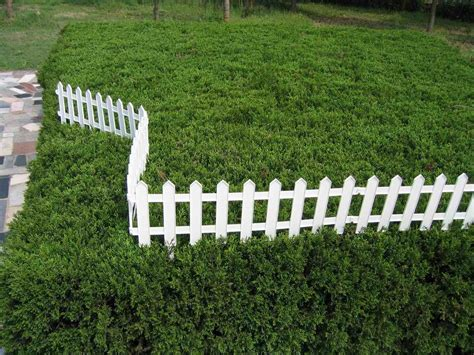 ideas home design ideas plastic garden fence ideas home