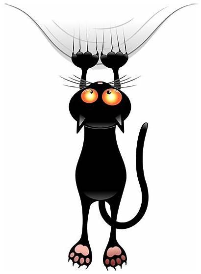 Halloween Cat Myniceprofile Tweet