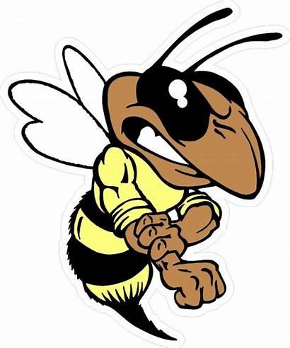 Mascot Hornet Yellow Jacket Bee Clipart Decal
