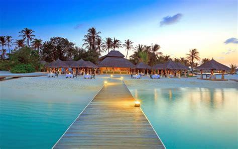 maldives dock island beach palm trees wallpapers hd