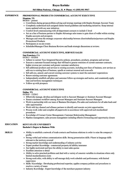 Commercial Account Executive Resume Samples  Velvet Jobs