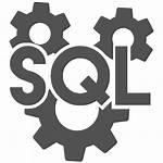 Sql Development Professional Mastering