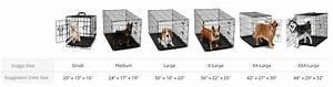dog crate sizes guide 2018 what size dog crate do i need With what size dog kennel do i need